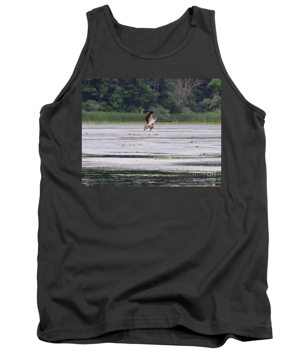 Osprey Tank Top featuring the photograph Osprey by September Stone
