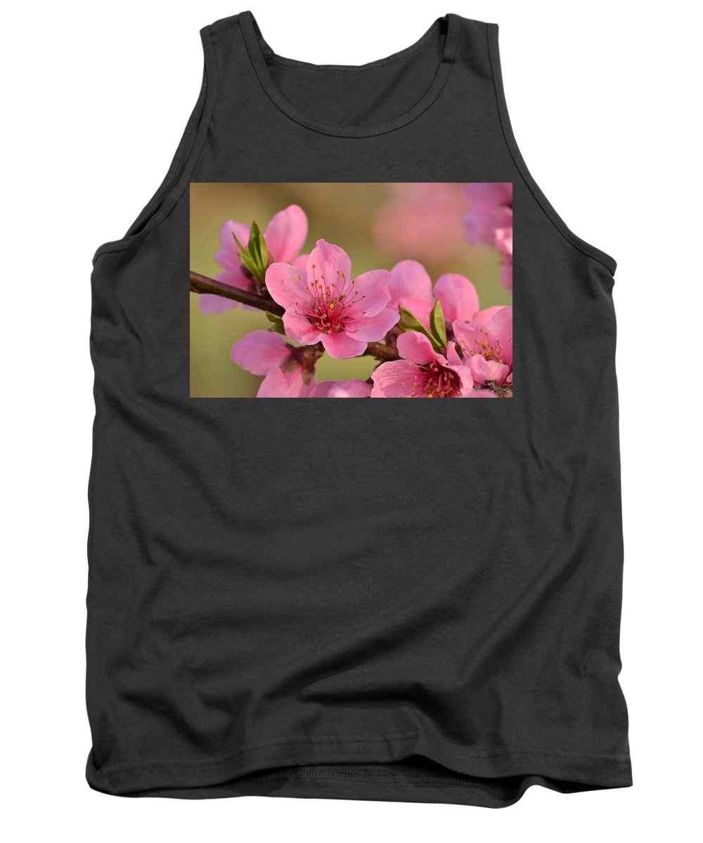 J.d. Grimes Tank Top featuring the photograph Peach Beautiful by JD Grimes