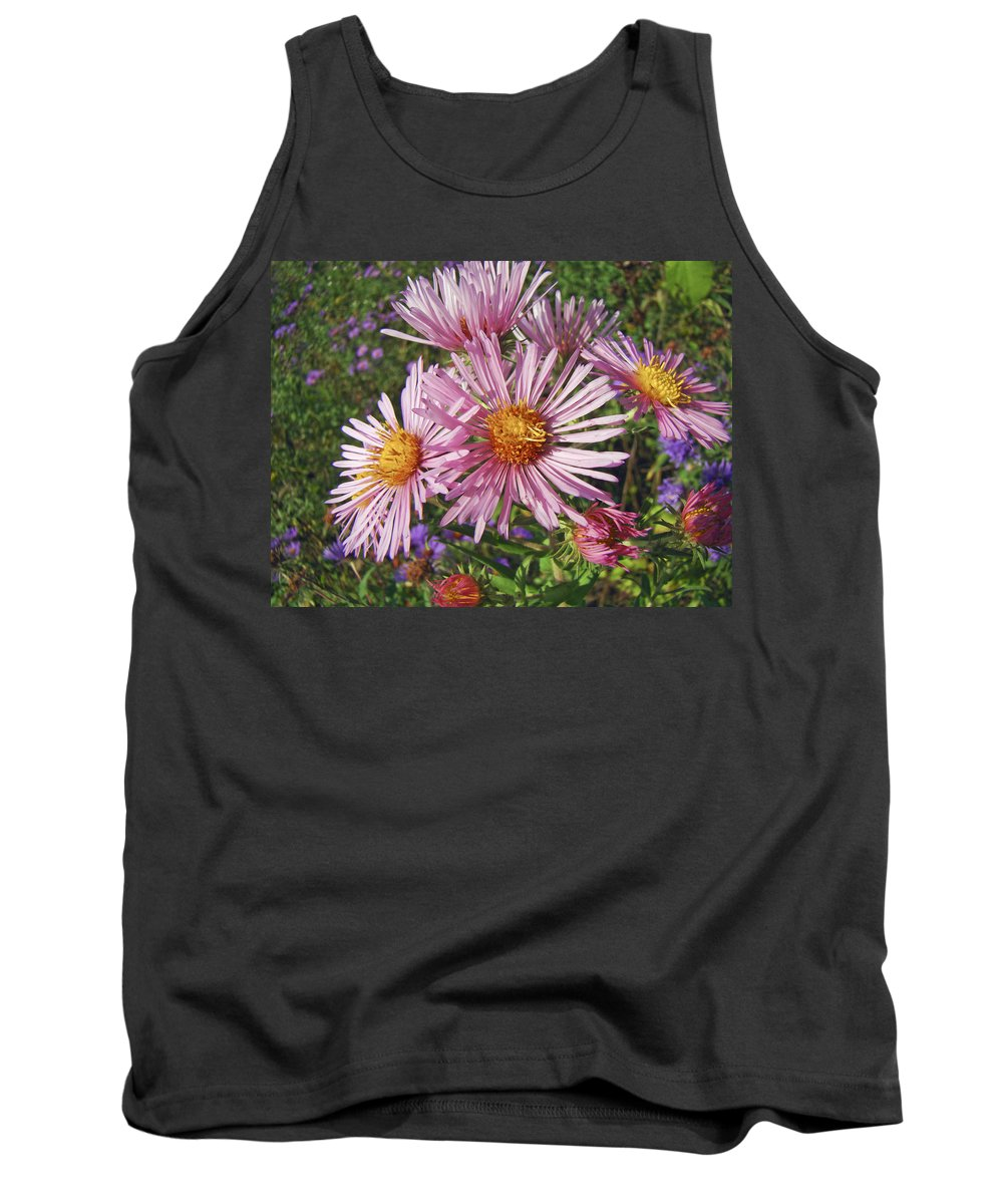 Aster Tank Top featuring the photograph Pink New York Aster- Symphyotrichum Novi-belgii by Mother Nature