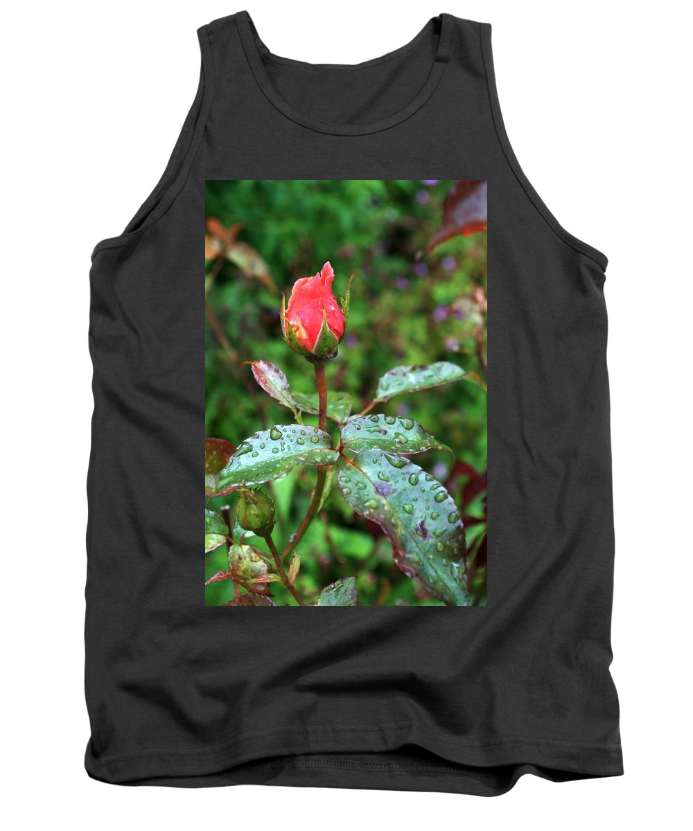 Red Rose Tank Top featuring the photograph Red Rose by Chris Day