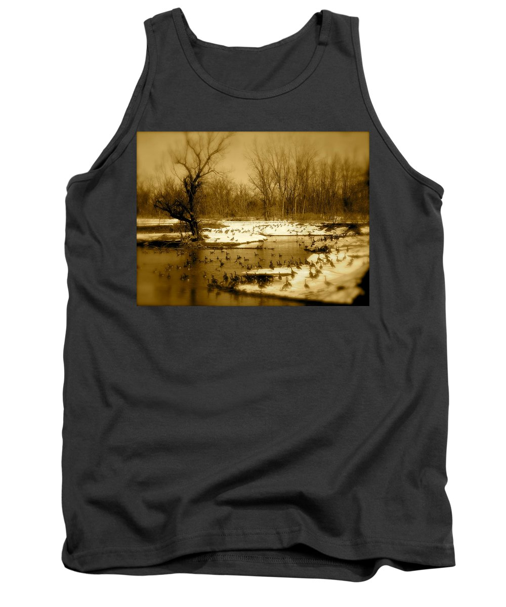 Landscape Tank Top featuring the photograph Resting Up by Arthur Barnes