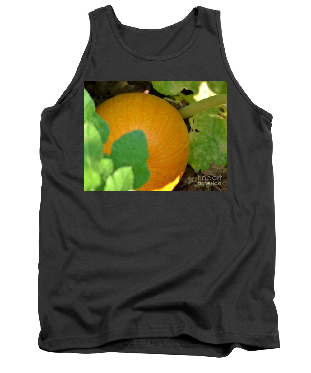 Ripe Tank Top featuring the photograph Ripe On The Vine by Maria Urso