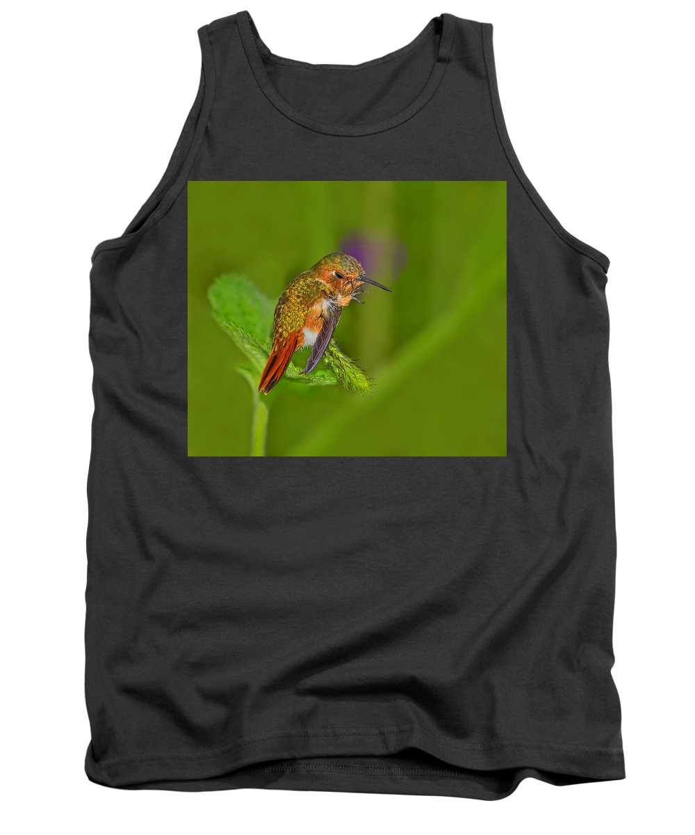Scintillant Hummingbird Tank Top featuring the photograph Scratch That Itch by Tony Beck