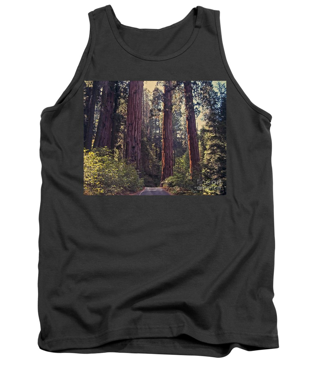 Mountains Tank Top featuring the photograph Sequoia National Park by Stephen Whalen