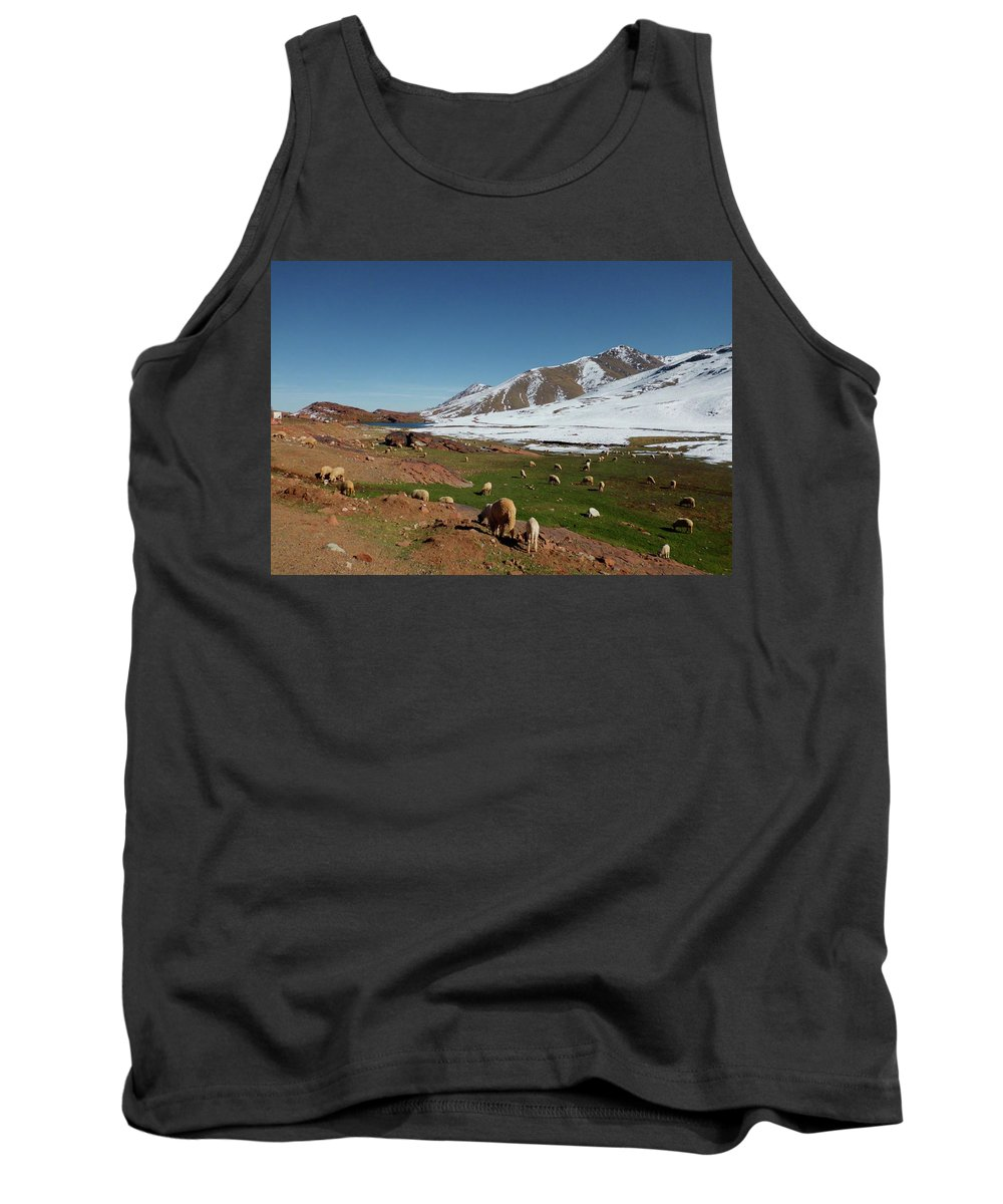 Travel Tank Top featuring the photograph Sheep In The Atlas Mountains 02 by Miki De Goodaboom