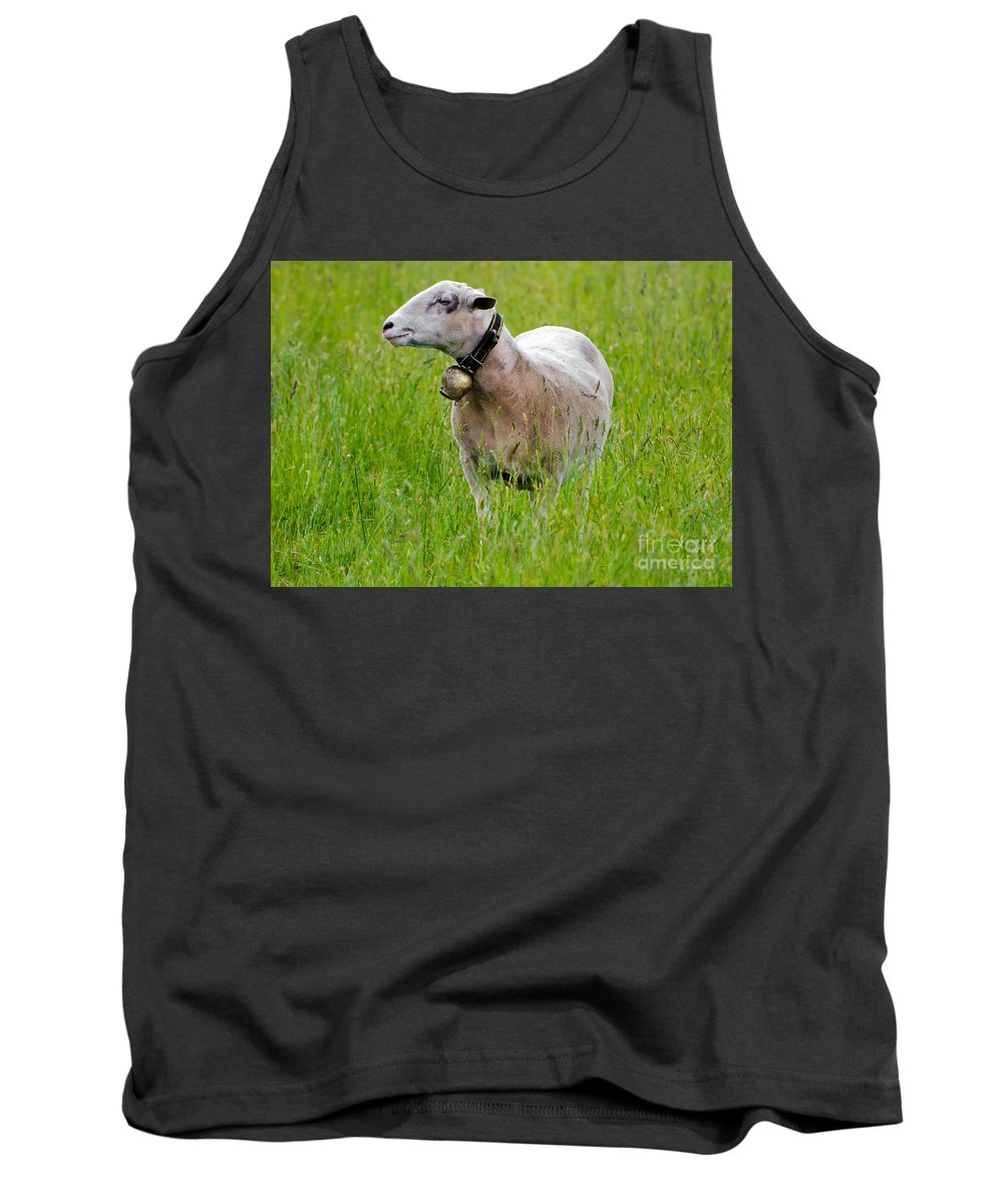 Sheep Tank Top featuring the photograph Sheep With A Bell by Mats Silvan