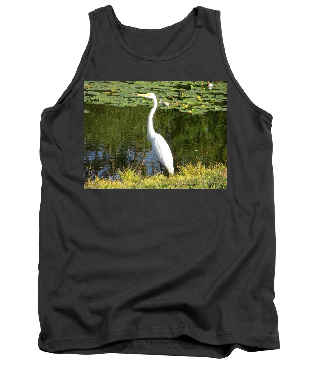 Aigrette Tank Top featuring the photograph Silver Heron by Sonali Gangane