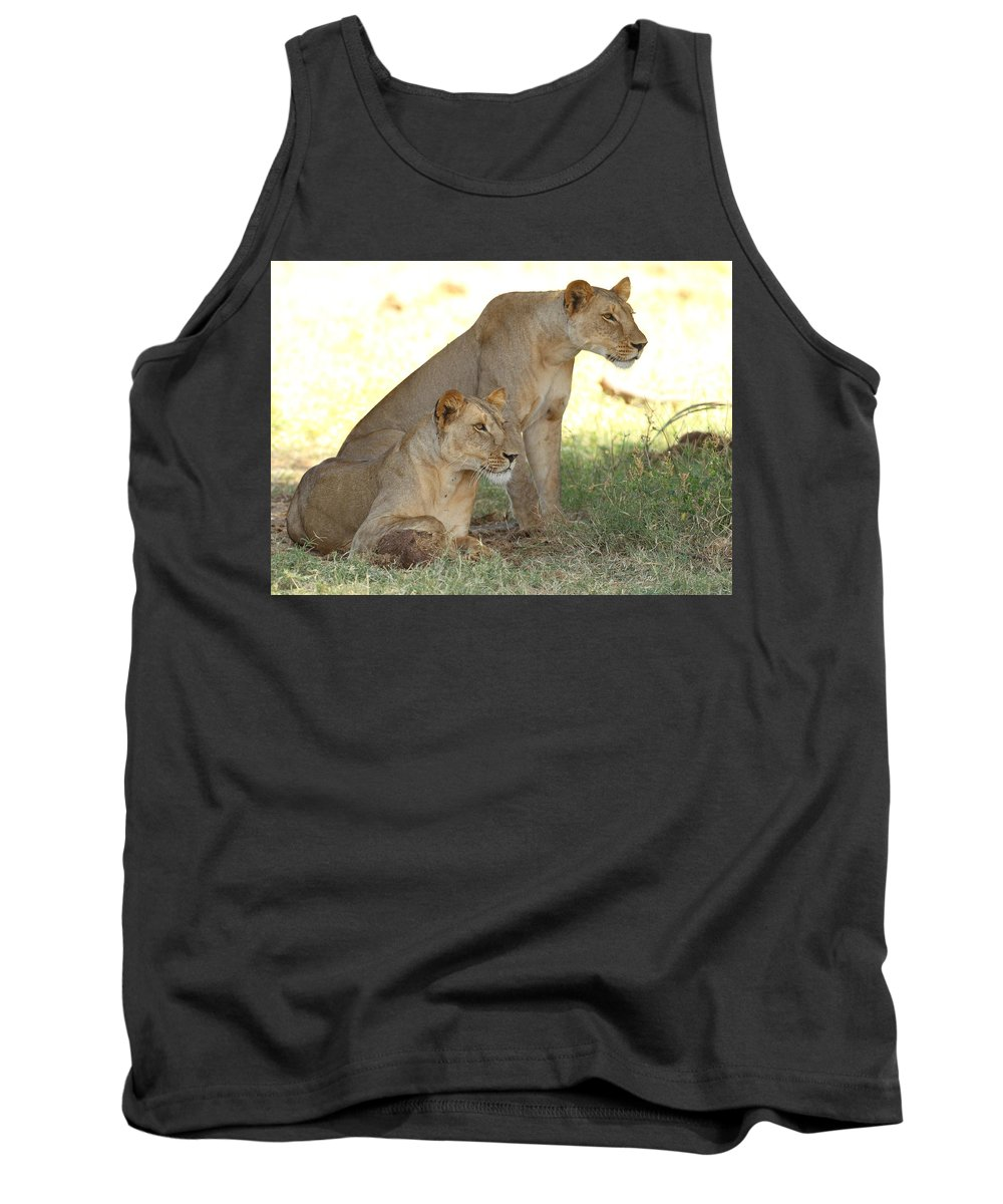 Lion Tank Top featuring the photograph Sisters by Stefon Linton