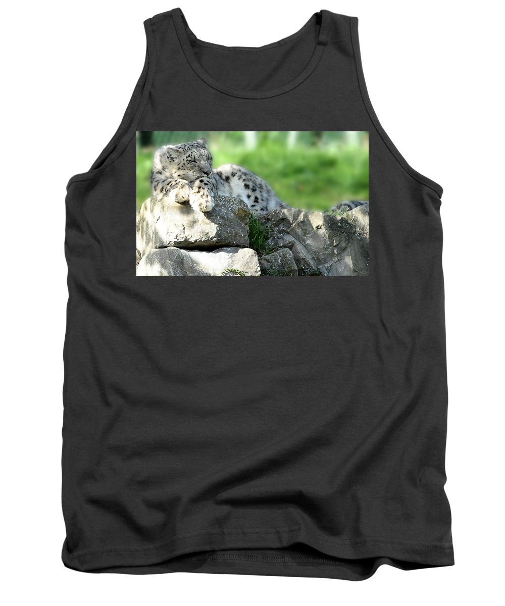 Snow Leopard Tank Top featuring the photograph Snow Leopard At Rest. Kitty Time by Jenny Rainbow