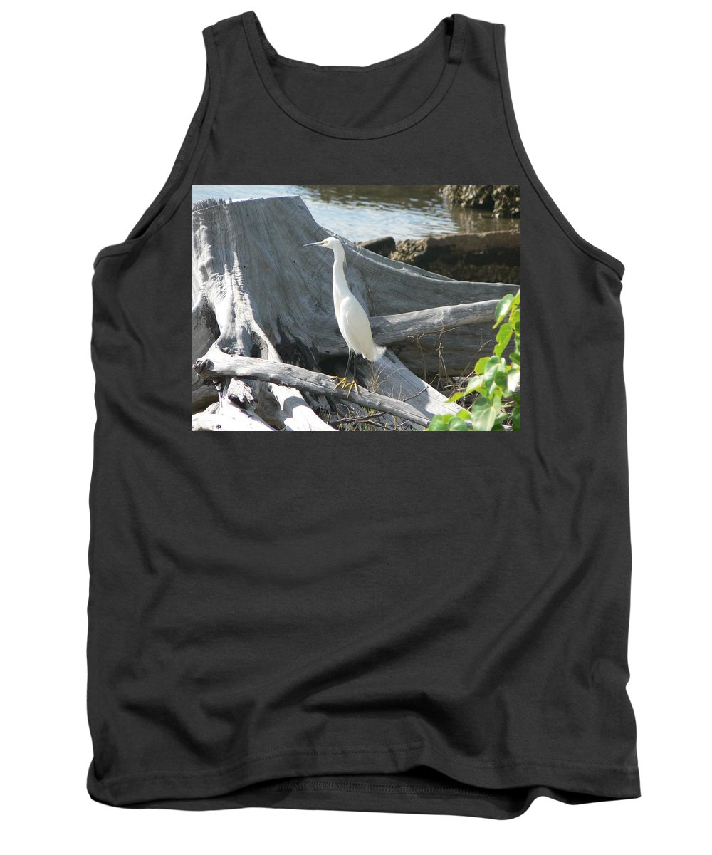 Snowy Tank Top featuring the photograph Snowy Egret by Laurel Best