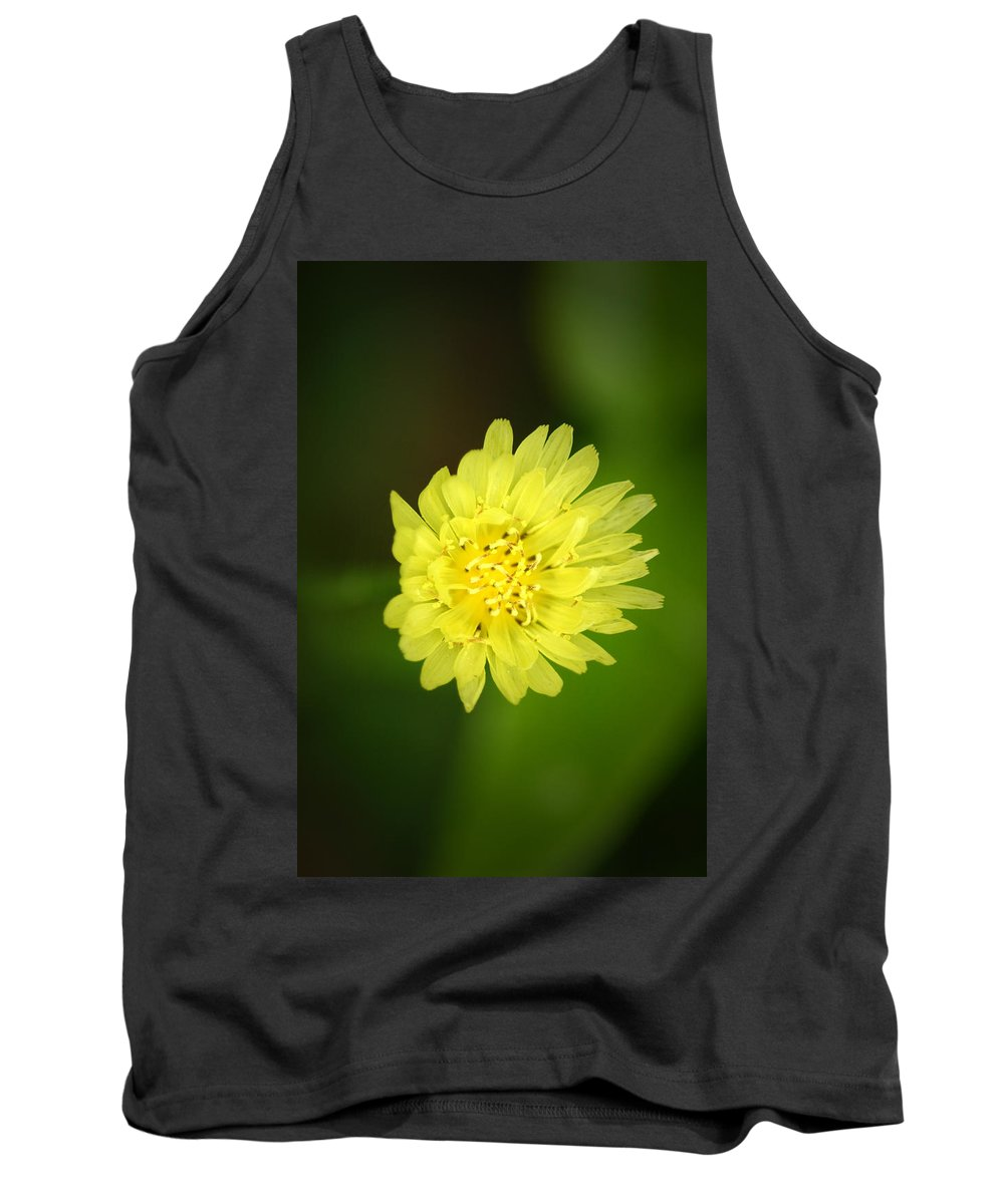 Flower Tank Top featuring the photograph Solar Flare by David Weeks