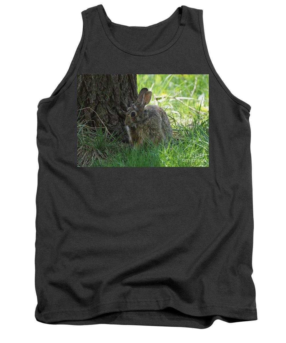 Rabbit Tank Top featuring the photograph Spring Rabbit by Lori Tordsen