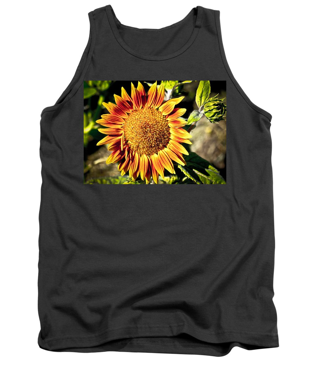 Sunflower Tank Top featuring the photograph Sunflower And Bud by Steve McKinzie
