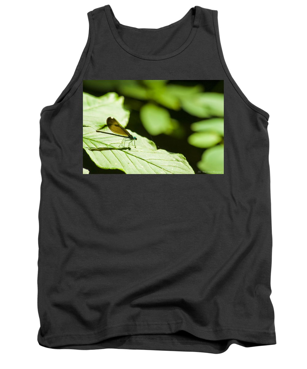 Dragonfly Tank Top featuring the photograph Sunlit Dragonfly by Crystal Heitzman Renskers