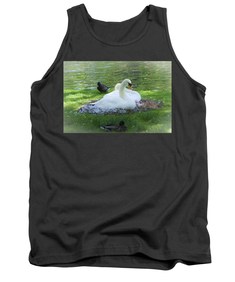 Nature Tank Top featuring the photograph Swans In Nest by Jiayin Ma