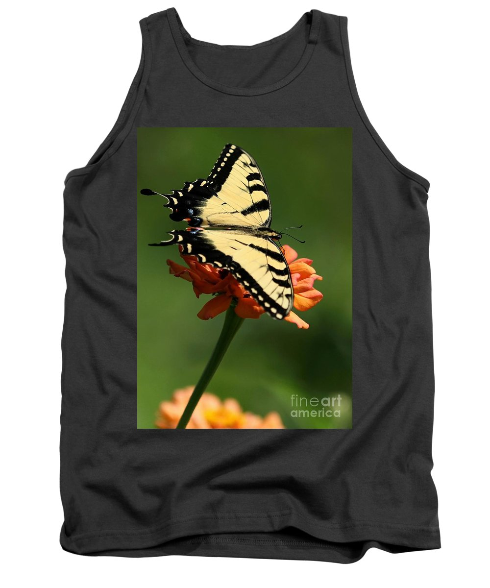 Piano Key Tank Top featuring the photograph Tantalizing Tiger Swallowtail Butterfly by Sabrina L Ryan