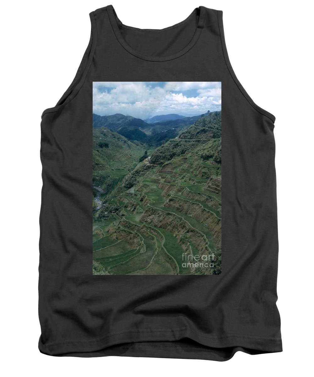 Terraced Rice Paddies Tank Top featuring the photograph Terraces Of Rice by Photo Researchers