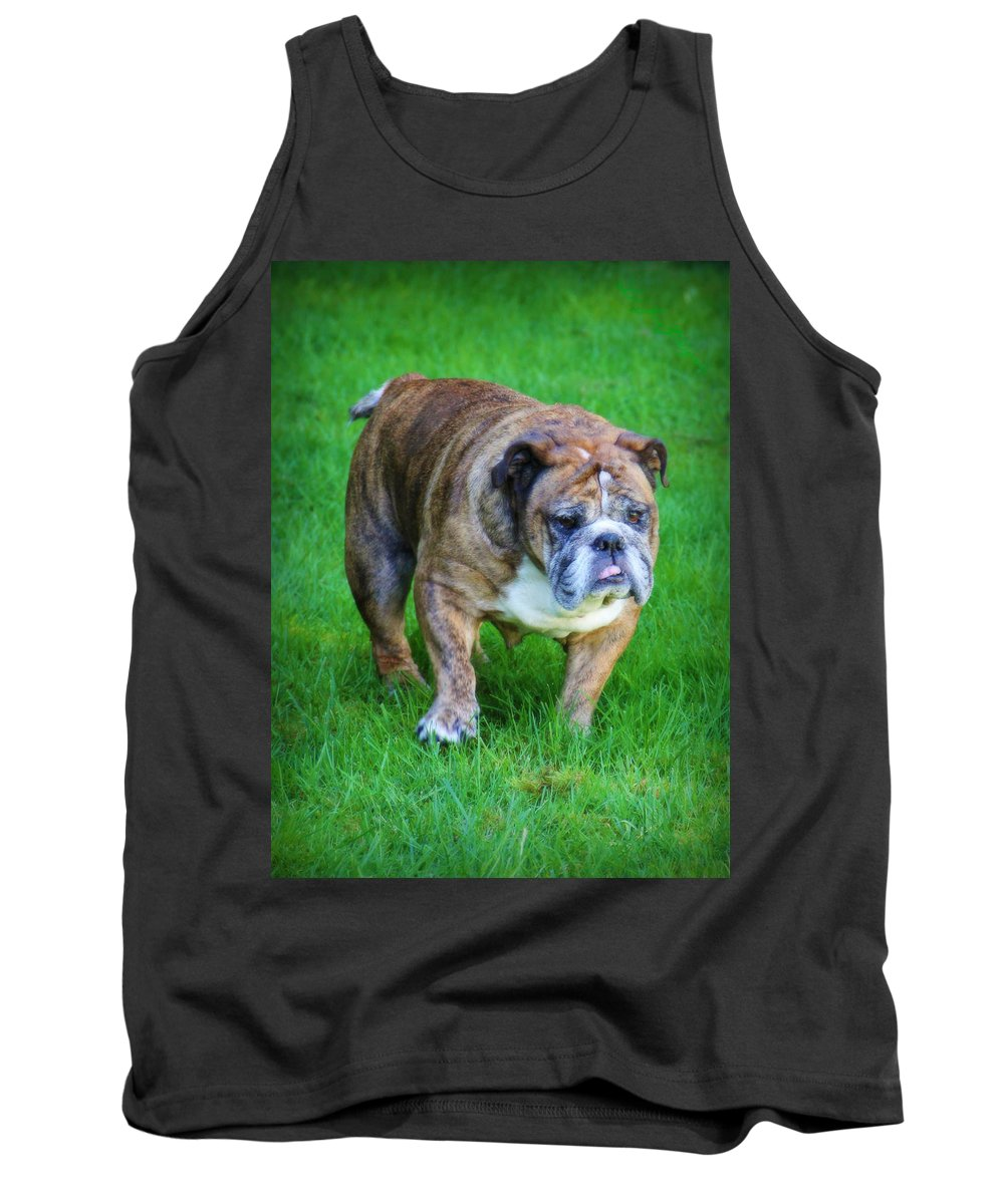 Bulldog Tank Top featuring the photograph The Bulldog Shuffle by Jeanette C Landstrom