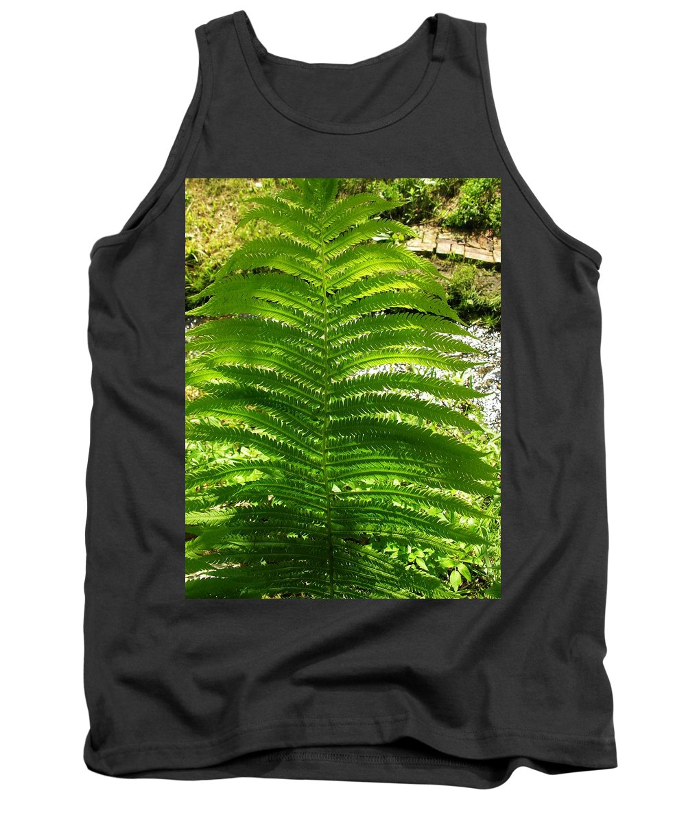 Fern Tank Top featuring the photograph The Fern by Sherman Perry