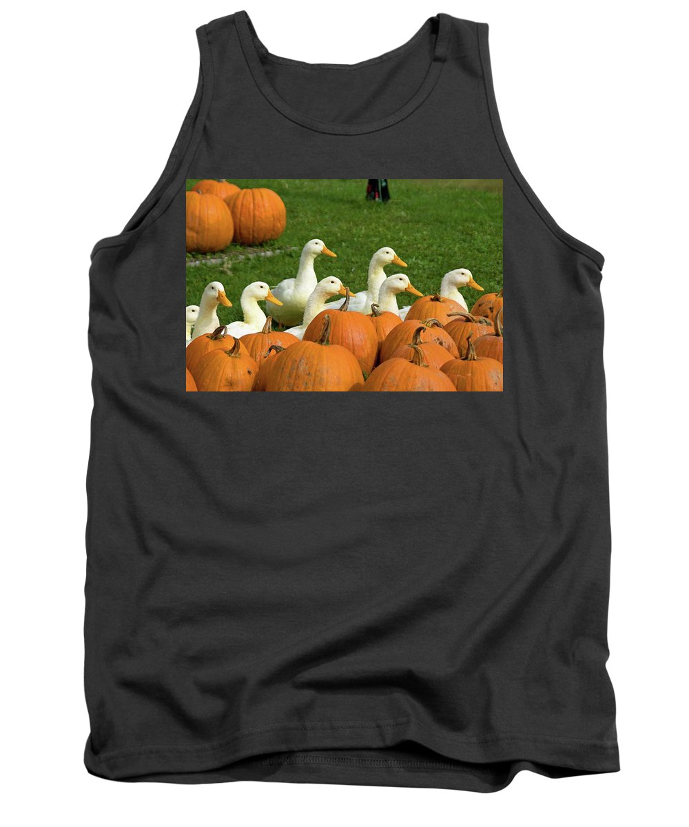 Birds Tank Top featuring the photograph The Gang by Guy Whiteley