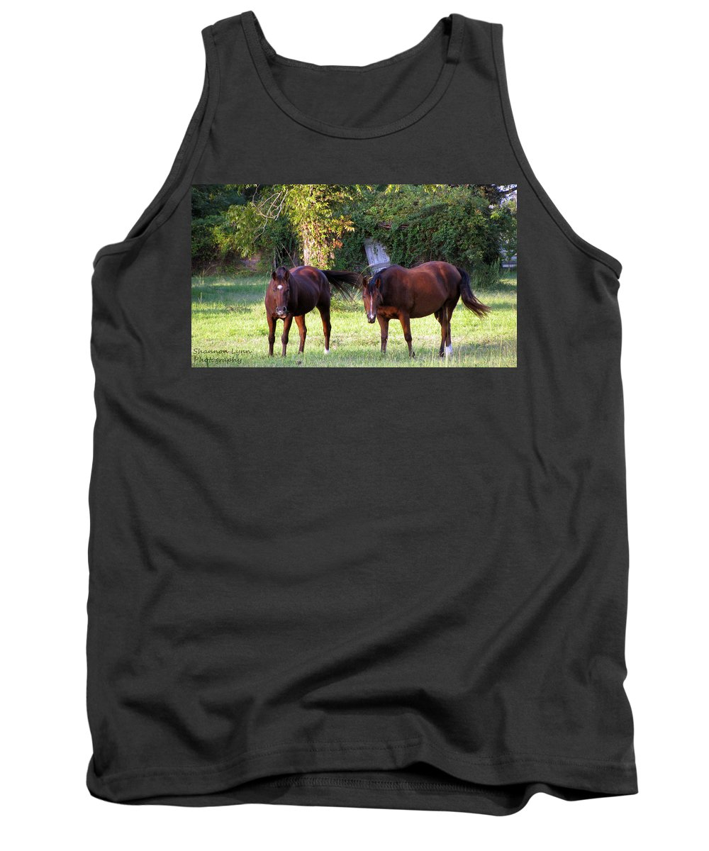 Horses Tank Top featuring the photograph The Horses by Shannon Nolting