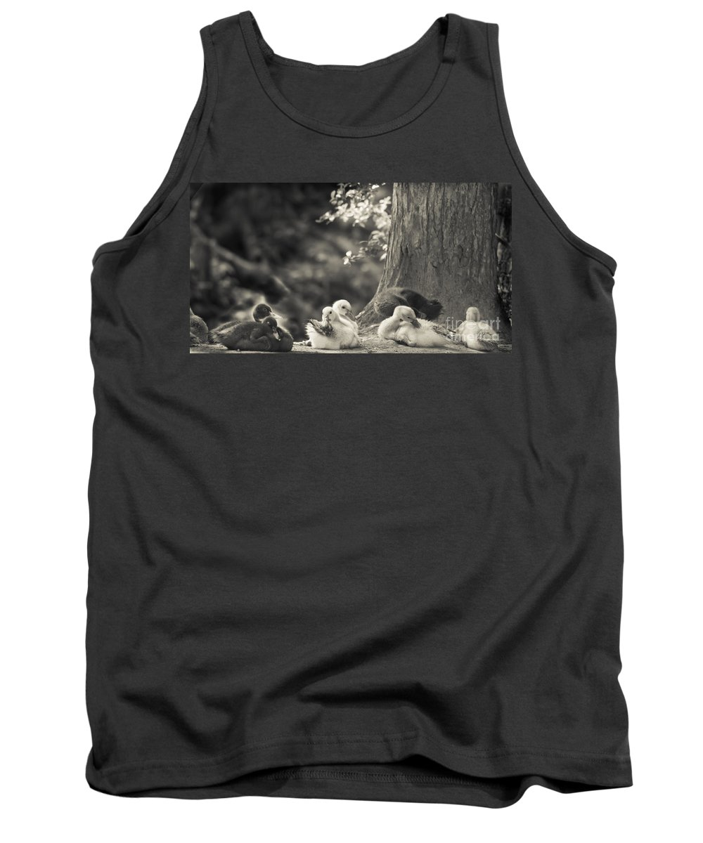 Ducks Tank Top featuring the mixed media The Little Ones Rest by Kim Henderson