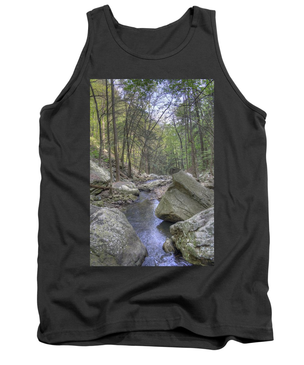 Cloudland Canyon Tank Top featuring the photograph The Stream by David Troxel