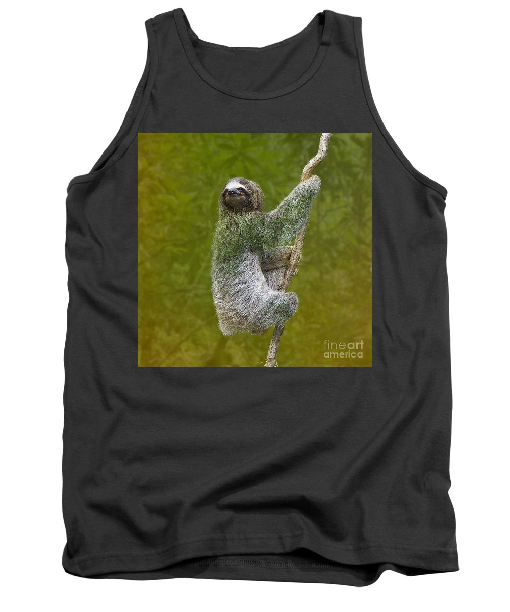 Sloth Tank Top featuring the photograph Three-toed Sloth Climbing by Heiko Koehrer-Wagner
