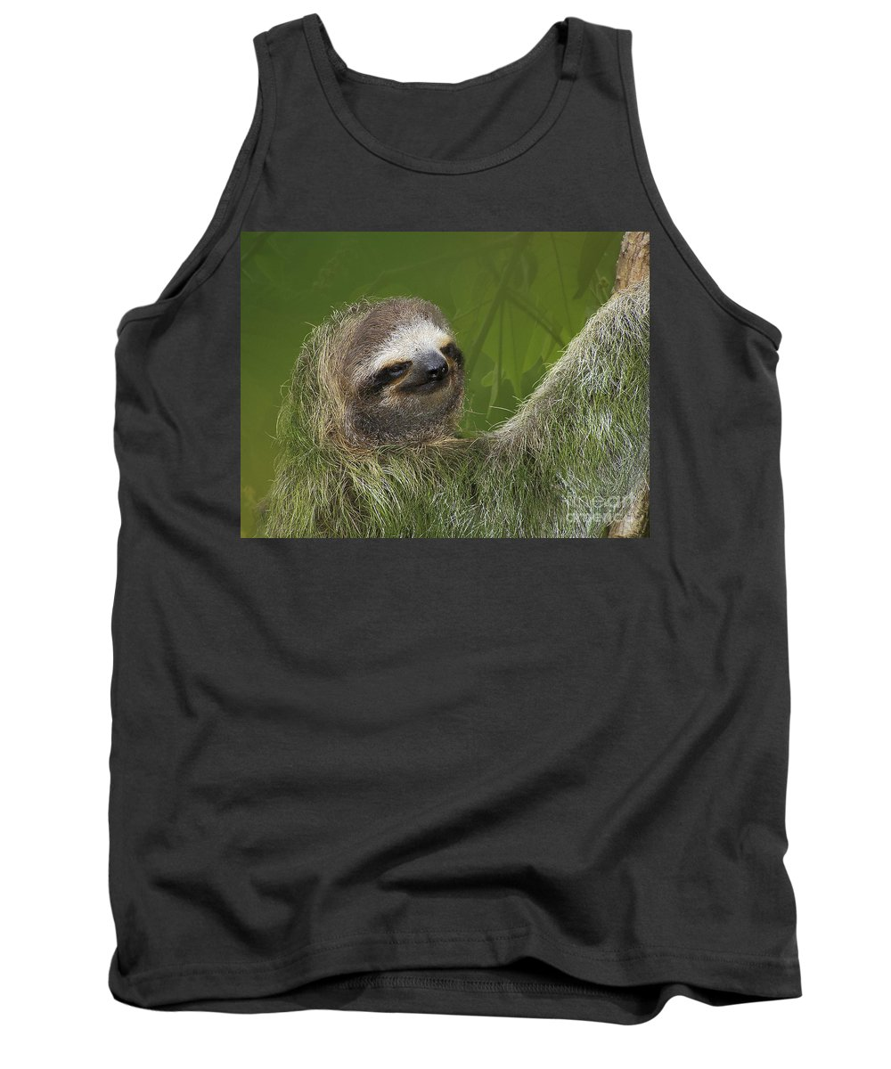 Sloth Tank Top featuring the photograph Three-toed Sloth by Heiko Koehrer-Wagner