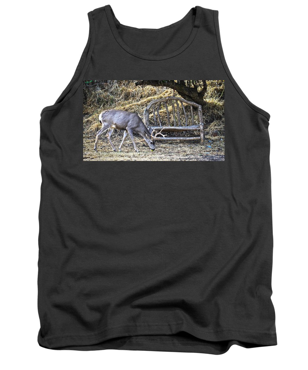 Mule Deer Buck Tank Top featuring the photograph Under The Old Apple Tree by Steve McKinzie