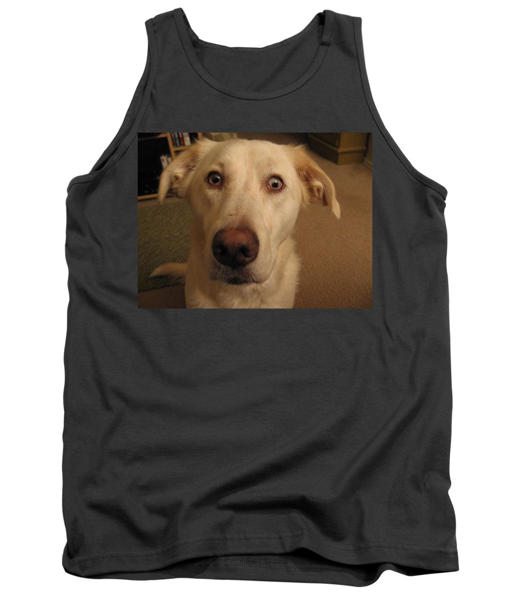 Dog Tank Top featuring the photograph Up Close by Amy Hosp