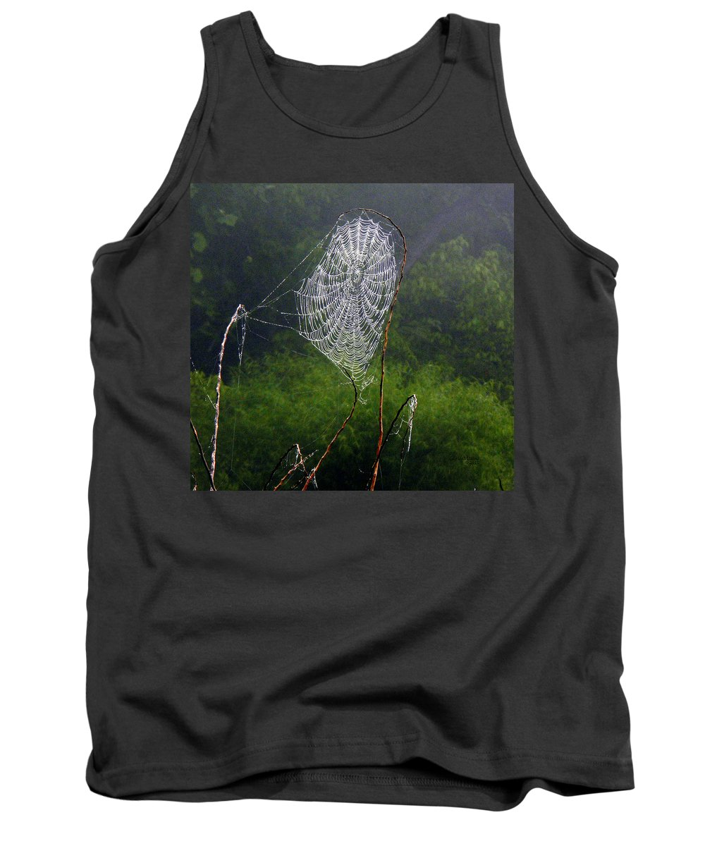 Web Tank Top featuring the photograph Web Over Foggy Lake by Ericamaxine Price