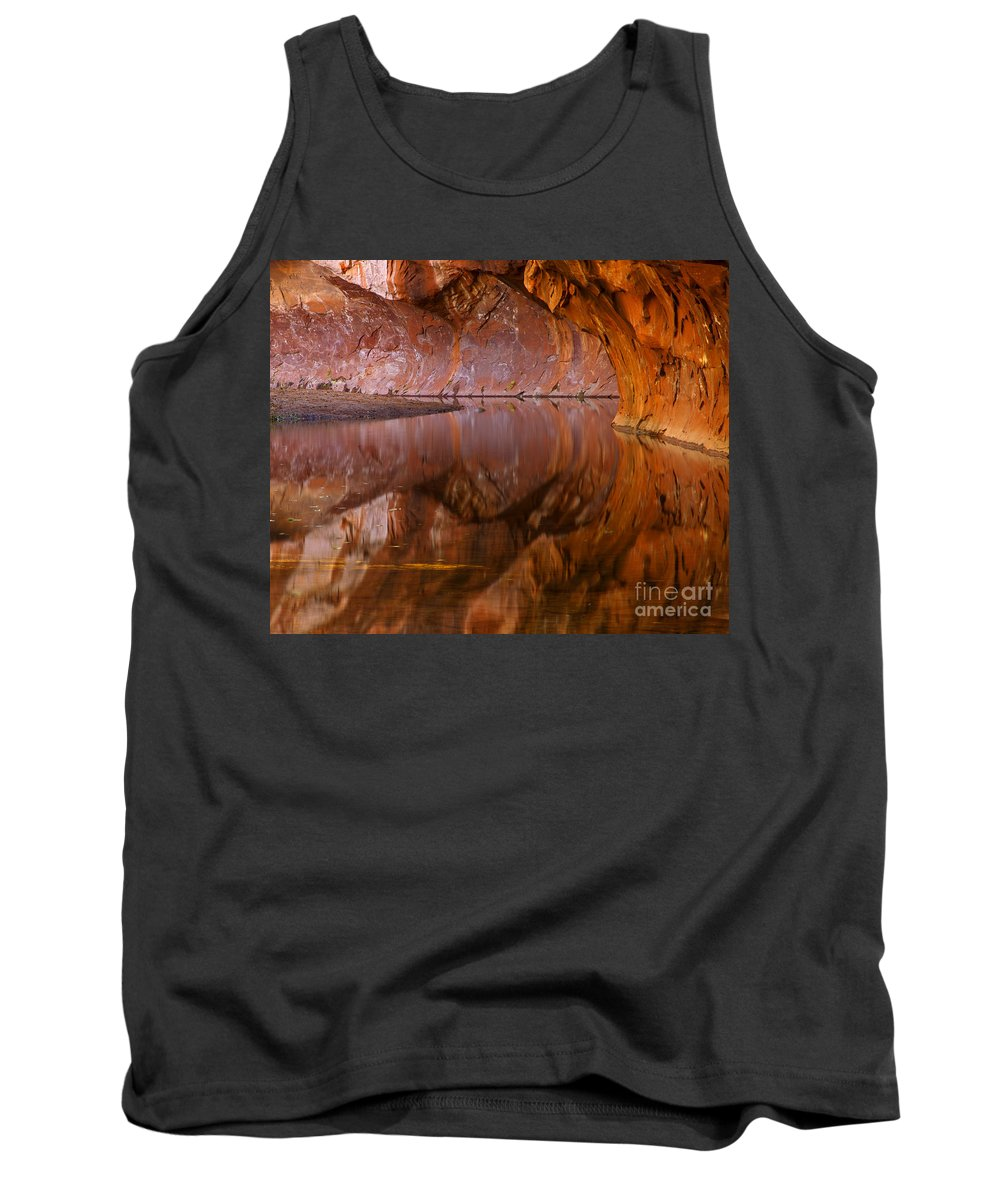 West Fork Tank Top featuring the photograph West Fork Illusion by Mike Dawson