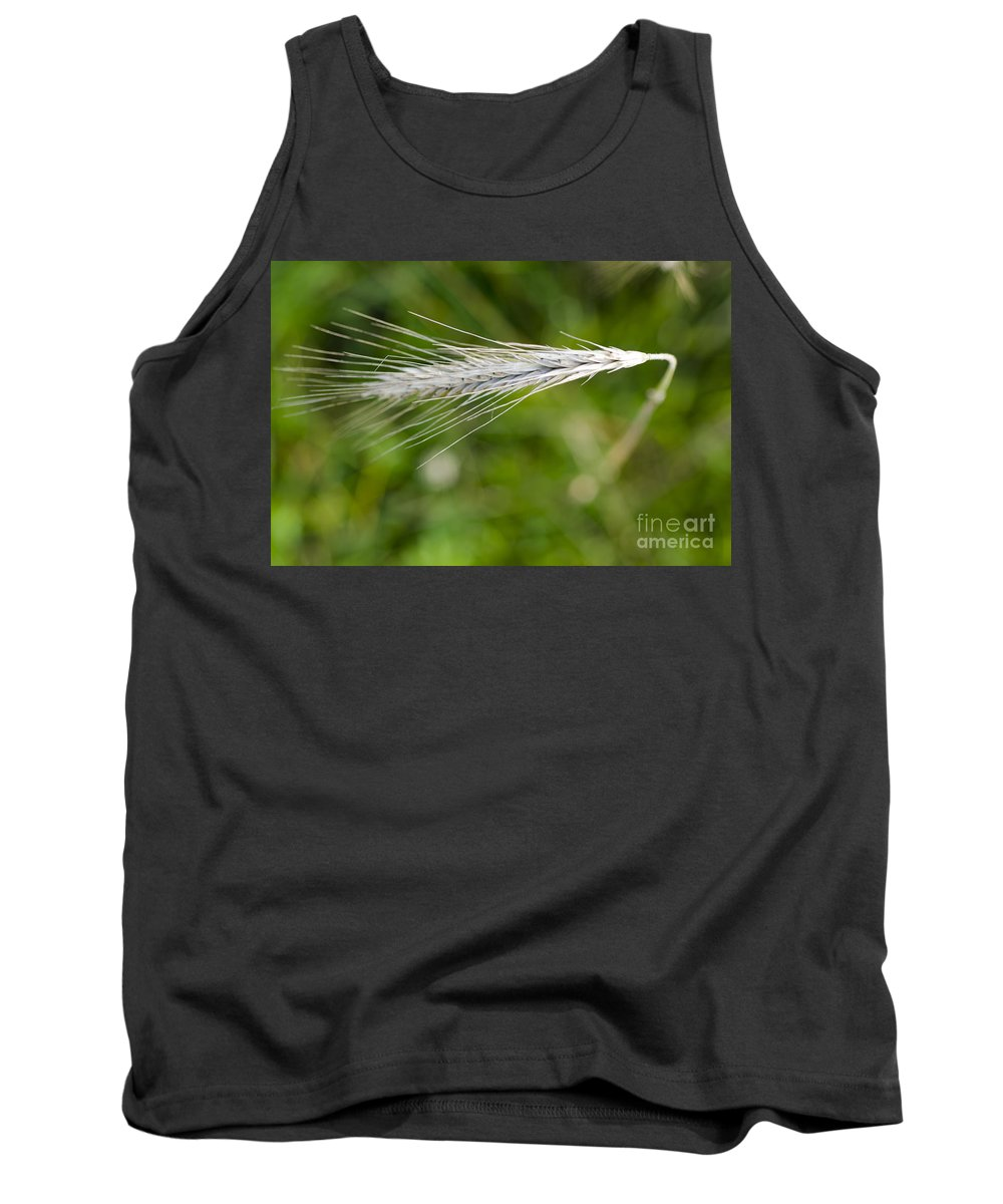 White Tank Top featuring the photograph Wheat by Mats Silvan