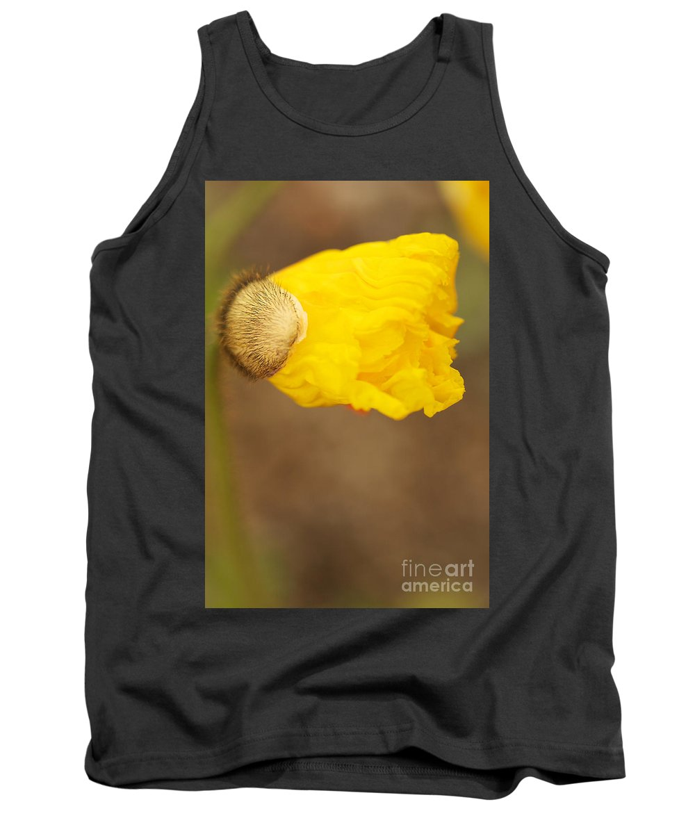Icelandic Poppy Photographs Tank Top featuring the photograph Yellow Icelandic by Brooke Roby