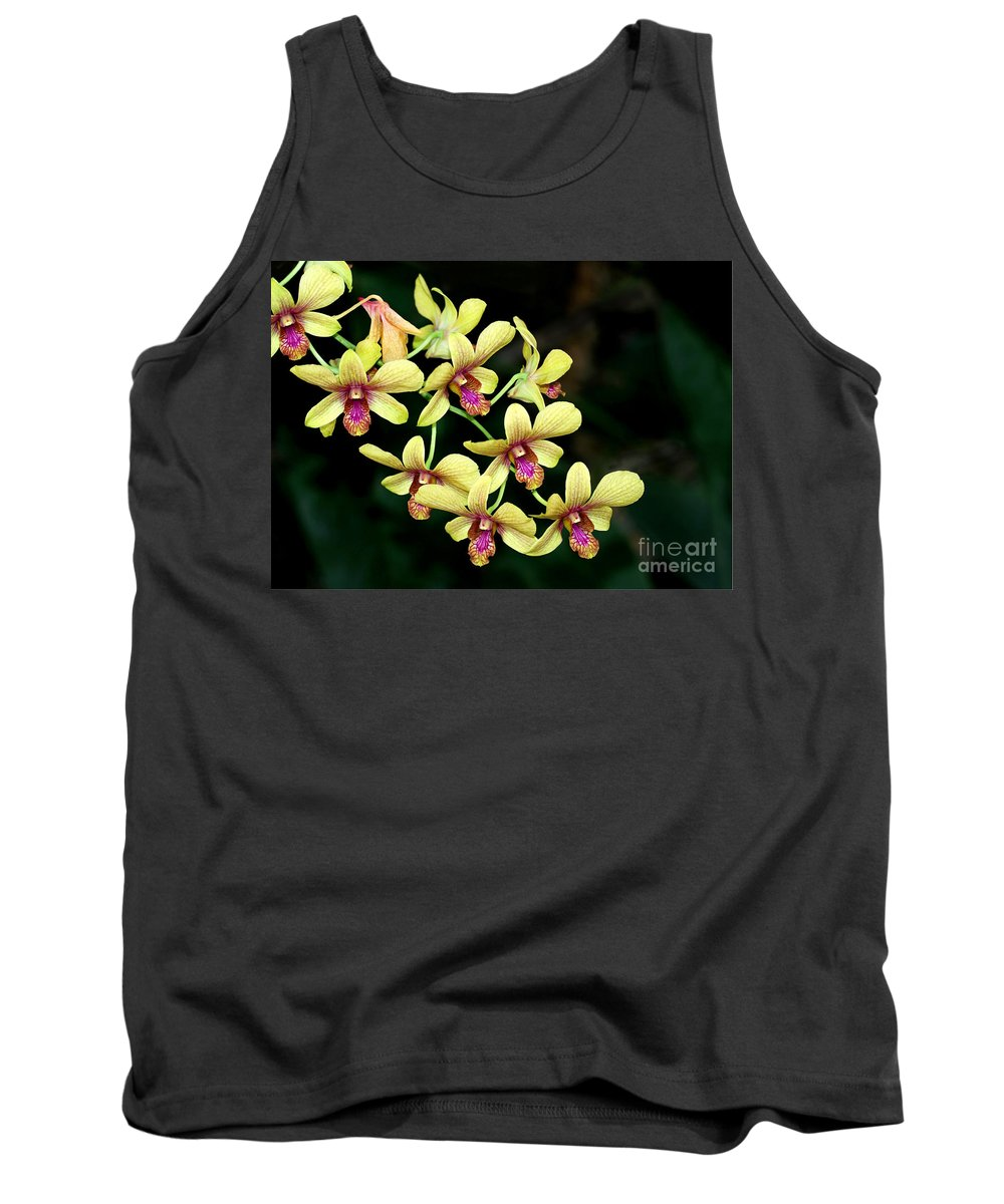 Landscape Tank Top featuring the photograph Yellow Orchid Cascade by Sabrina L Ryan