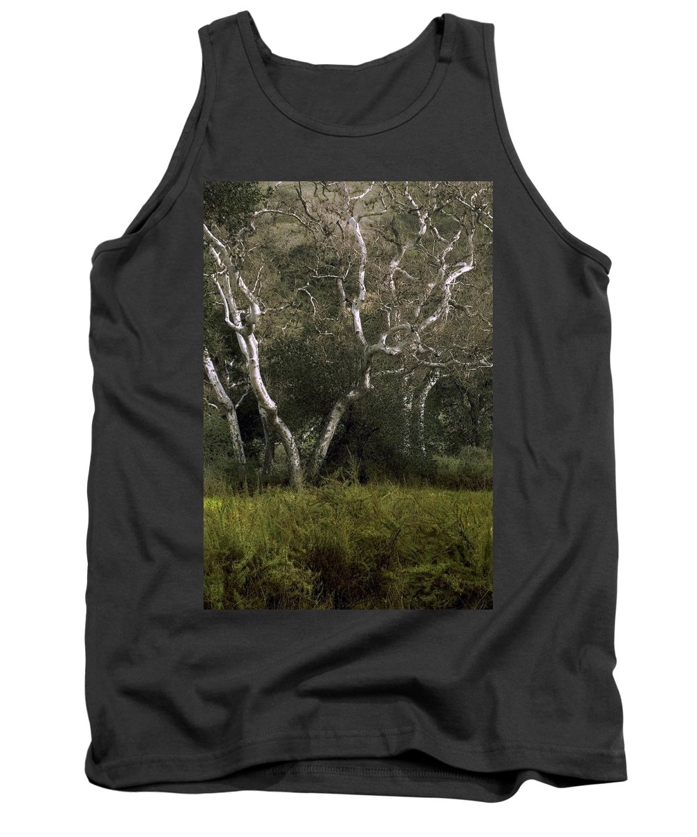 Tree Tank Top featuring the photograph Dv Creek Trees by Karen W Meyer