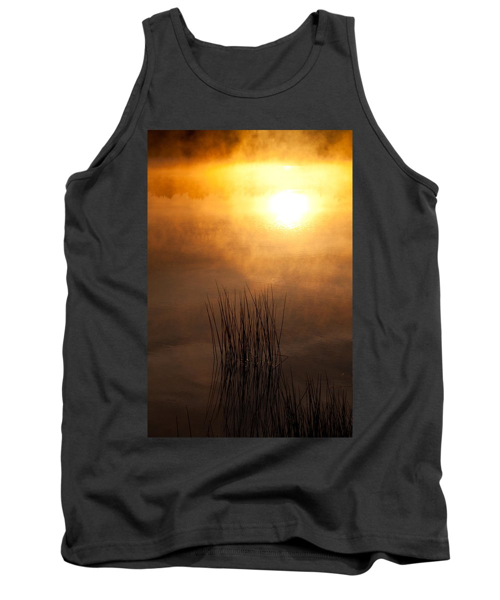 Misty Lake Tank Top featuring the photograph Mist And Lake Reeds At Sunrise by Irwin Barrett