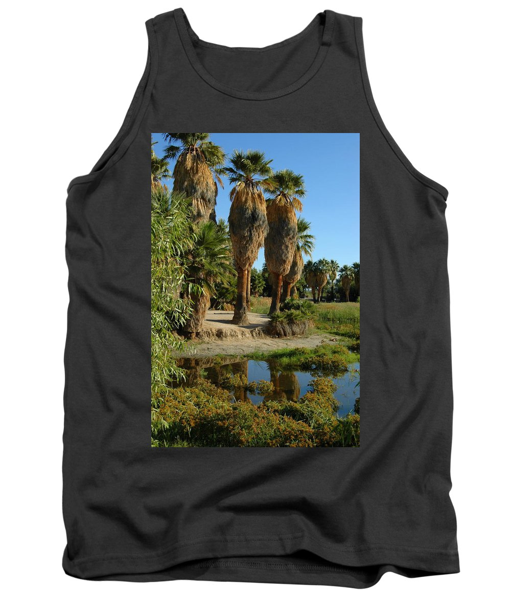 Palm Tank Top featuring the photograph Agua Caliente Park by Teresa Stallings