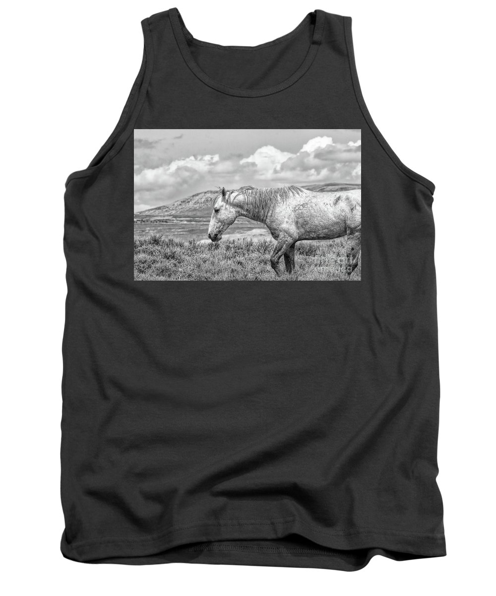 Stallion Tank Top featuring the photograph Battle Weary by Jim Garrison