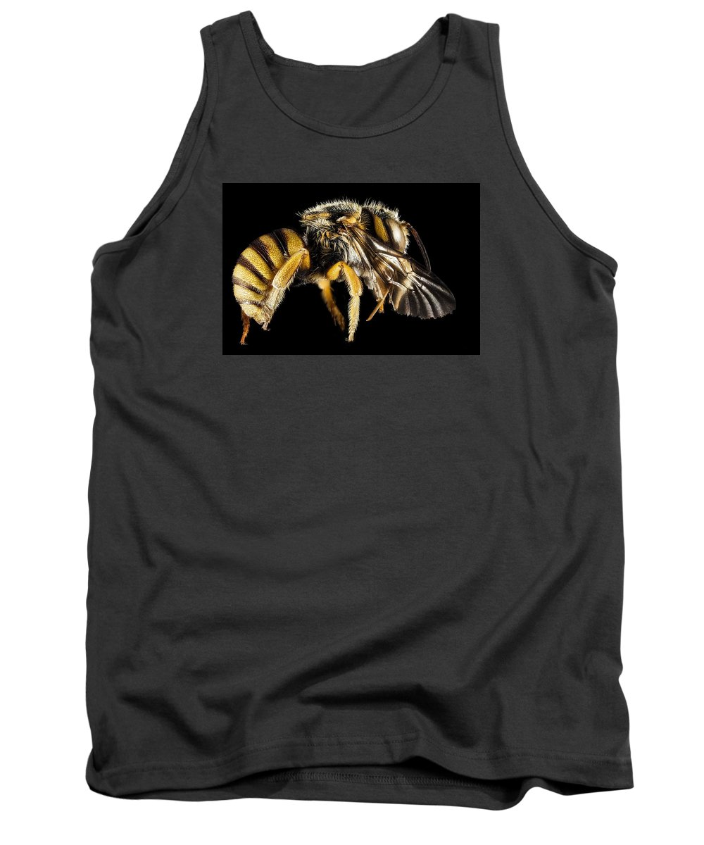 Wings Tank Top featuring the photograph Bee by FL collection