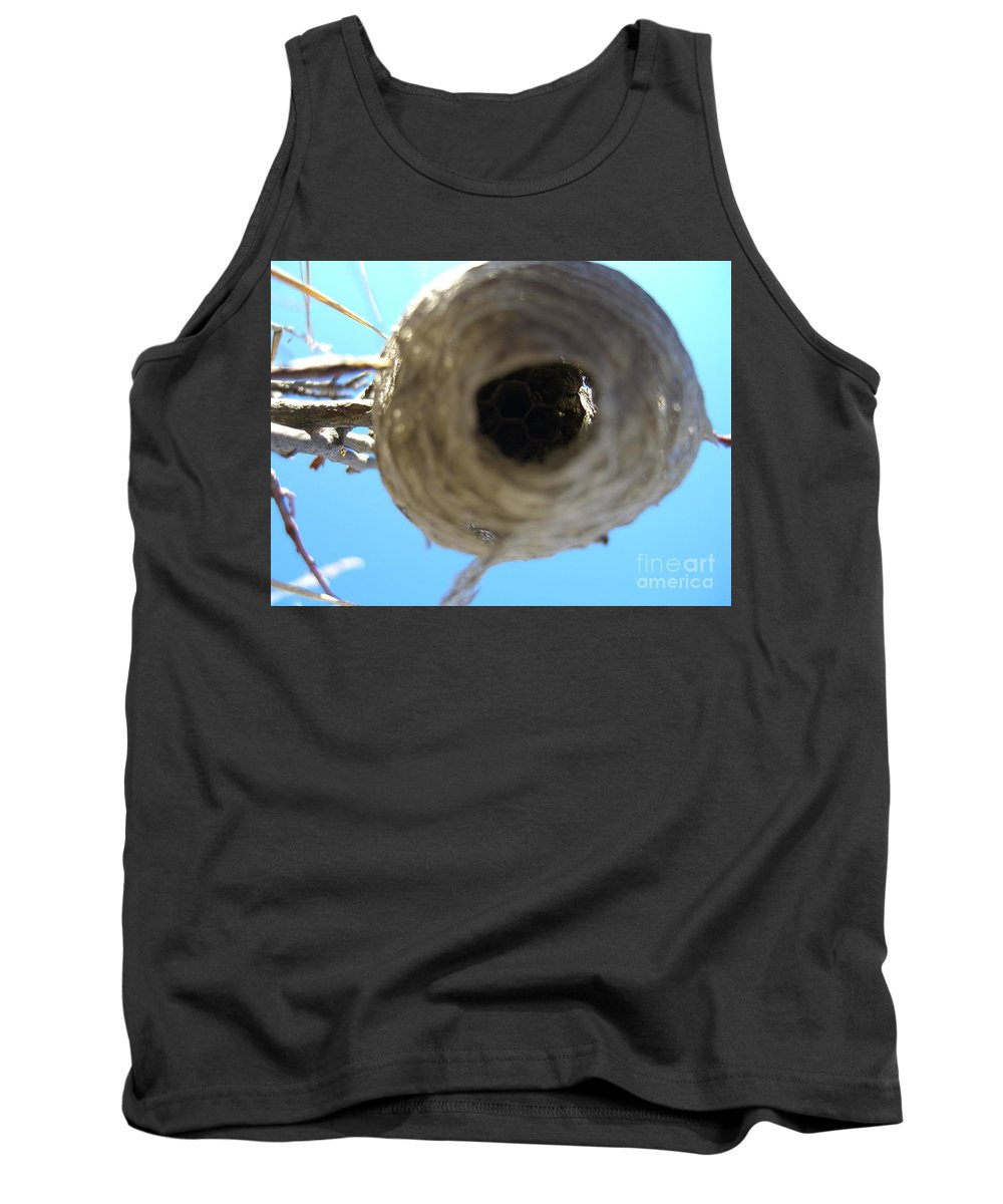 Photograph Bee Hive Blue Sky Branch Insect Tank Top featuring the photograph Bee Hive by Seon-Jeong Kim