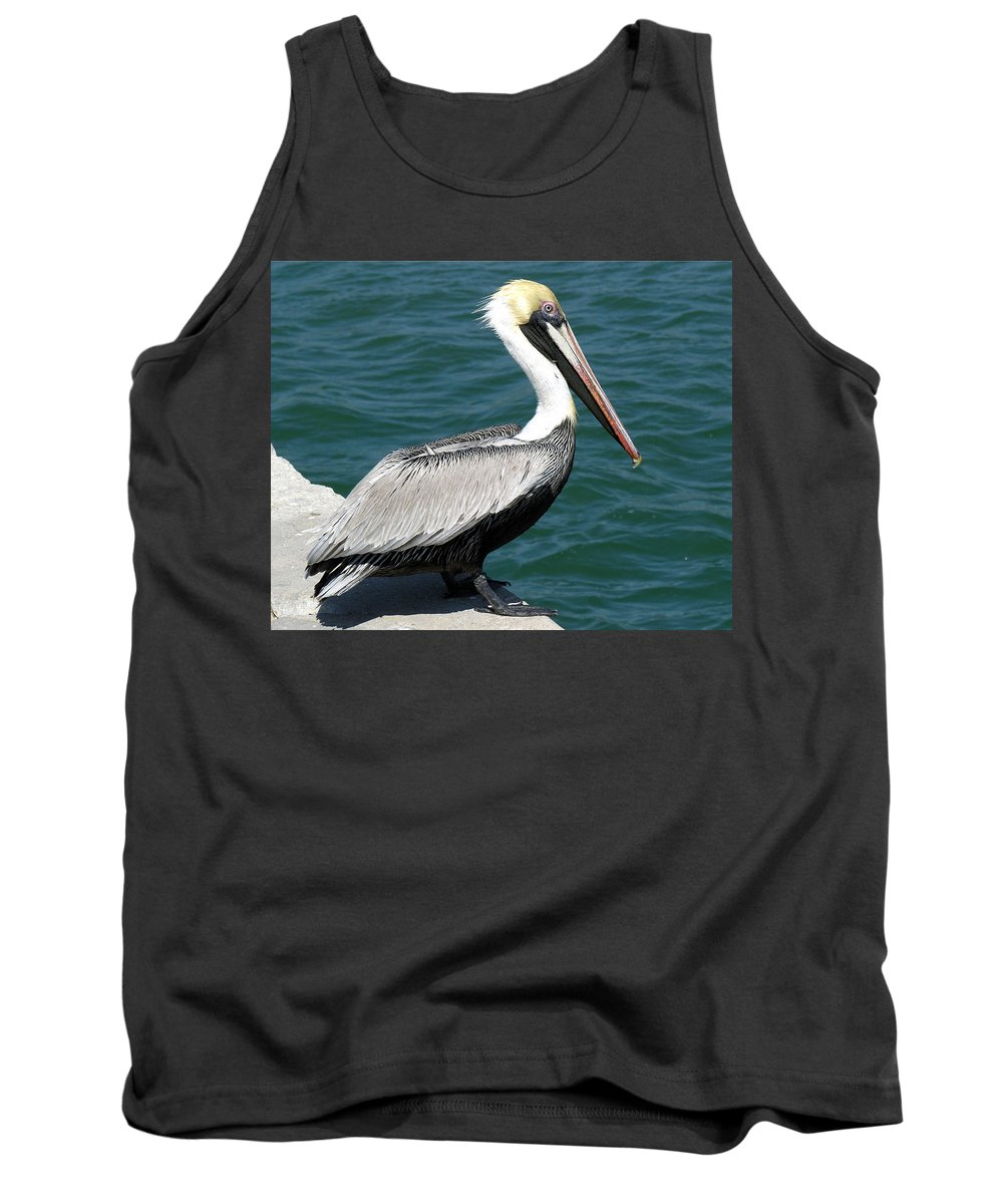 Pelecanus; Occidentalis; American; Brown; Pelican; Bird; Sea; Seabird; Ocean; Space; Coast; Cape; Ca Tank Top featuring the photograph Brown Pelican by Allan Hughes