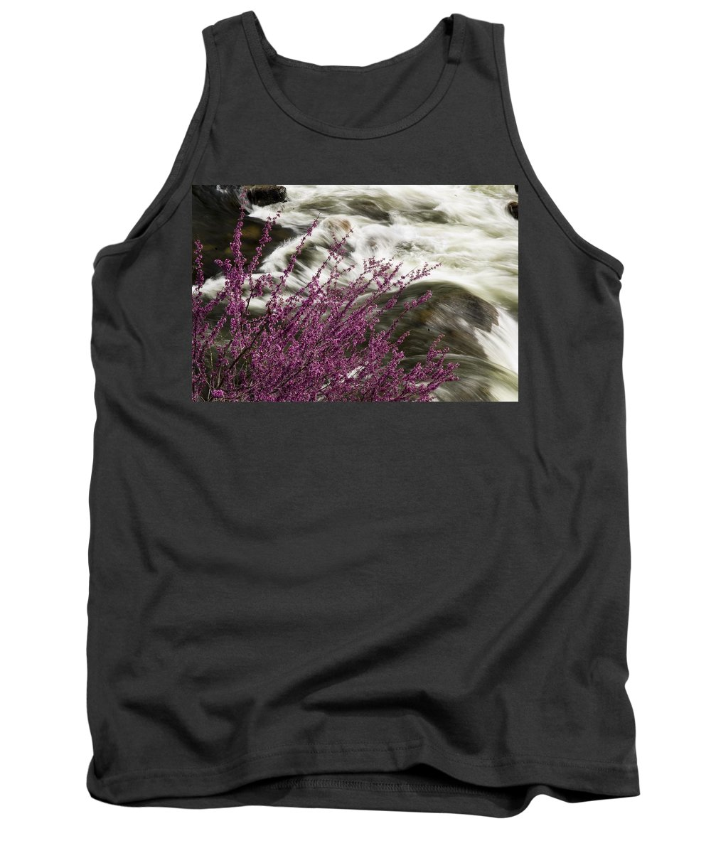 California Scenes Tank Top featuring the photograph Cranberry Gulch by Norman Andrus