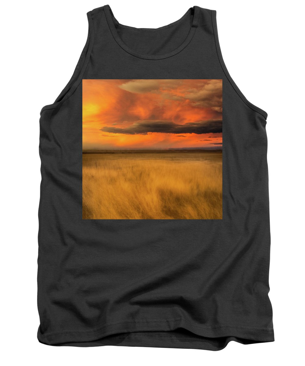 Usa Tank Top featuring the photograph First Encounter 2 by John Whitmarsh