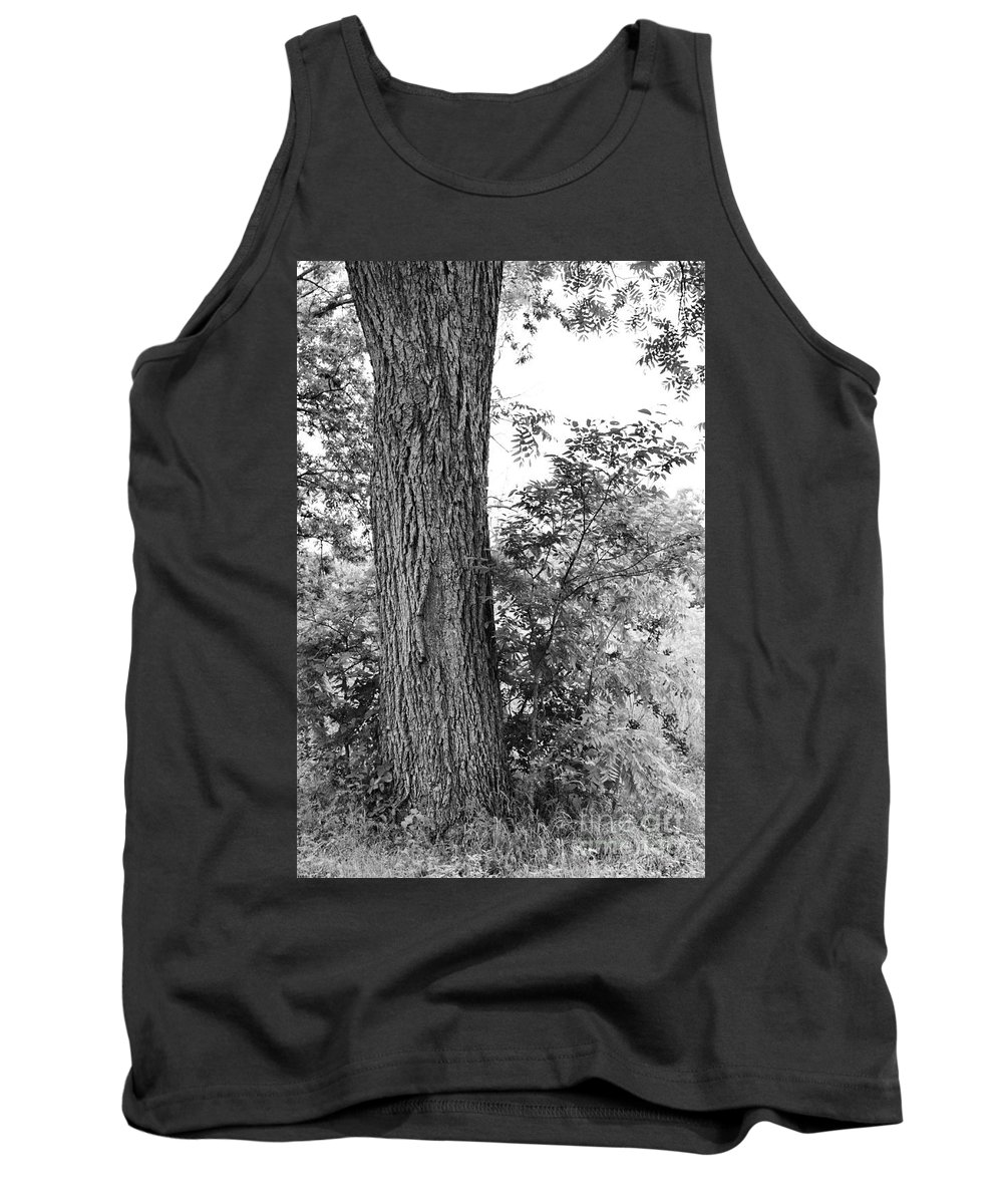 Heaven Tank Top featuring the photograph Heaven's Tree by Gary Richards