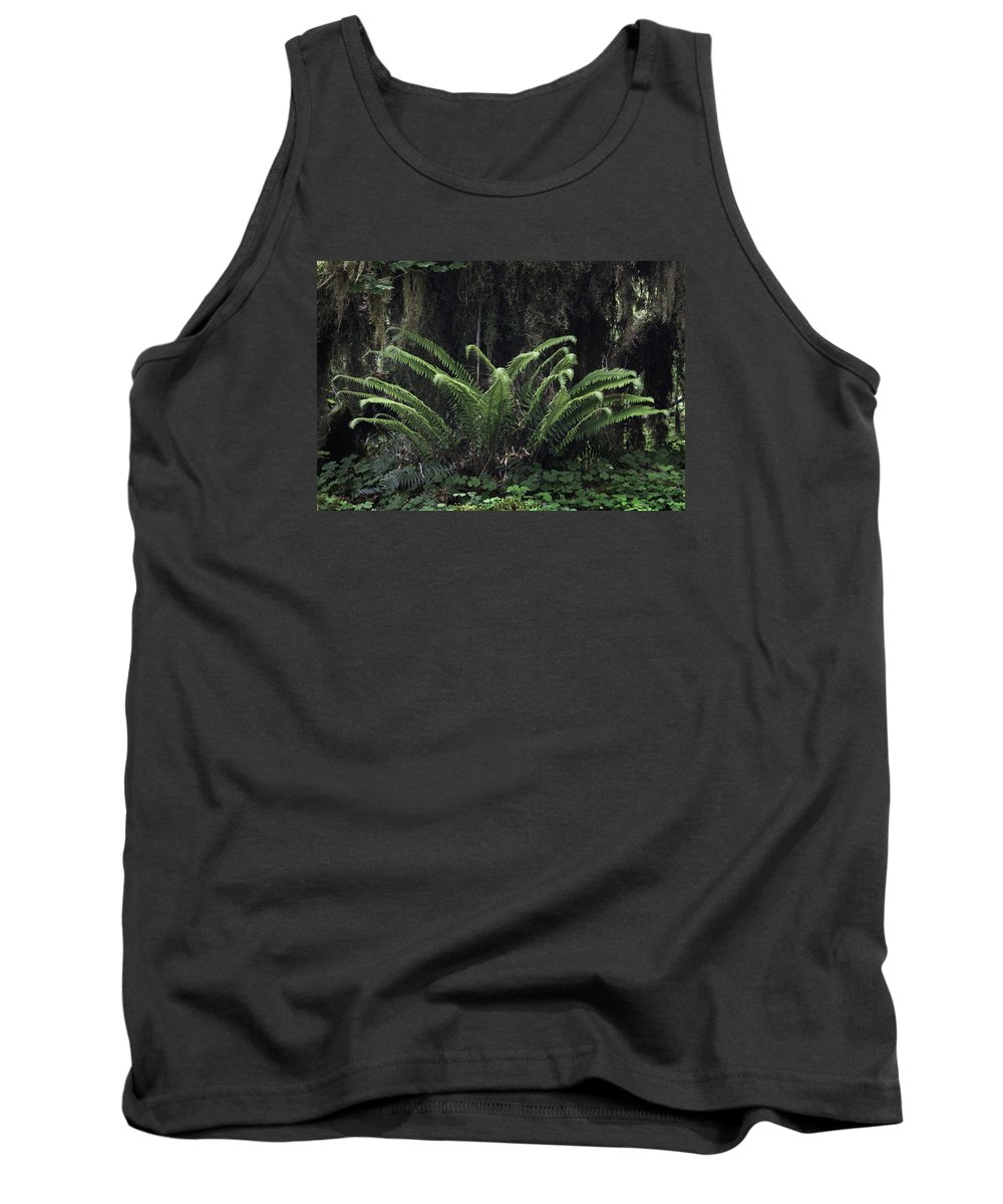 Hoh Tank Top featuring the photograph Hoh Rain Forest 3392 by Bob Neiman