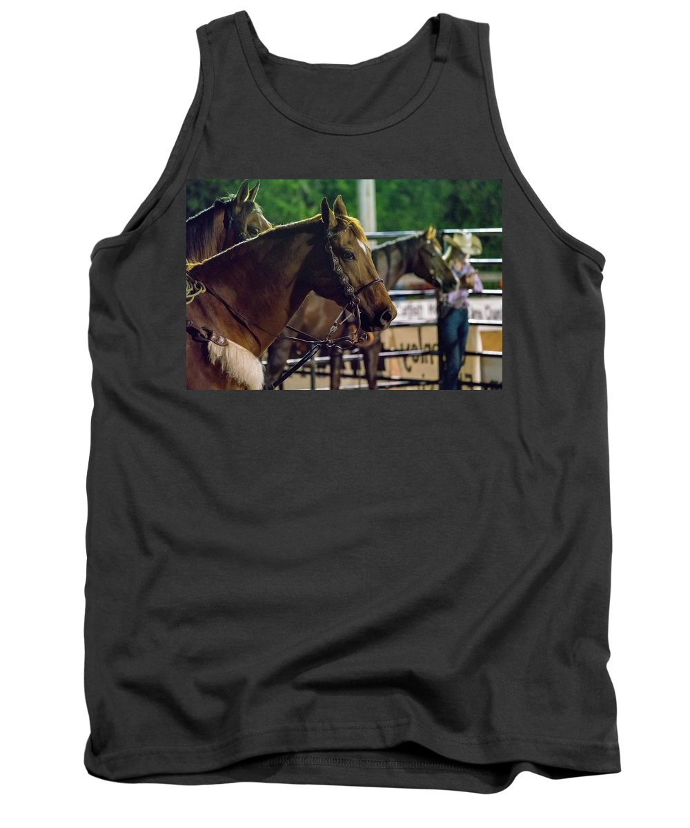 Horse Tank Top featuring the photograph Horse by Glenn Matthews