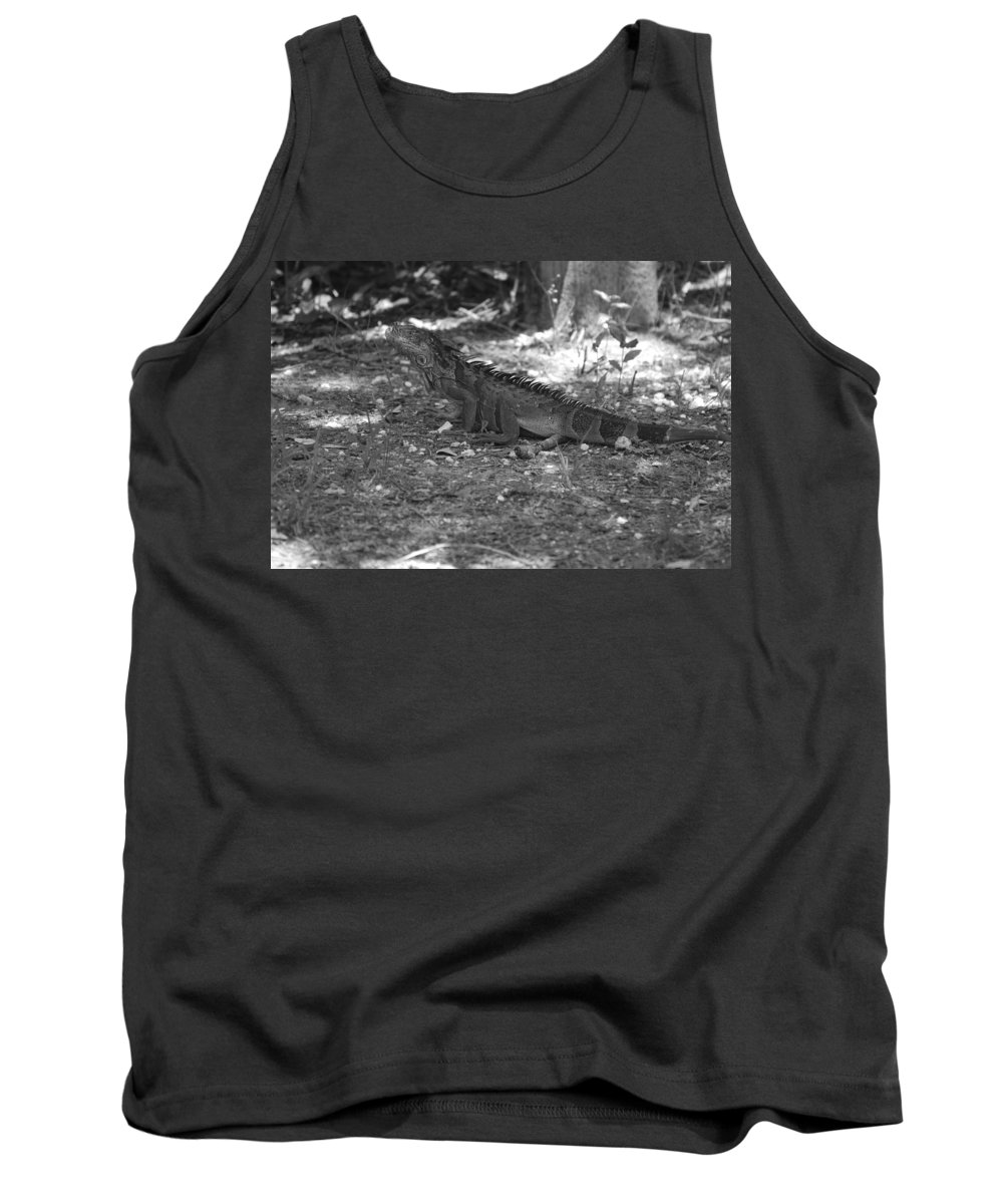 Black And White Tank Top featuring the photograph I Iguana by Rob Hans