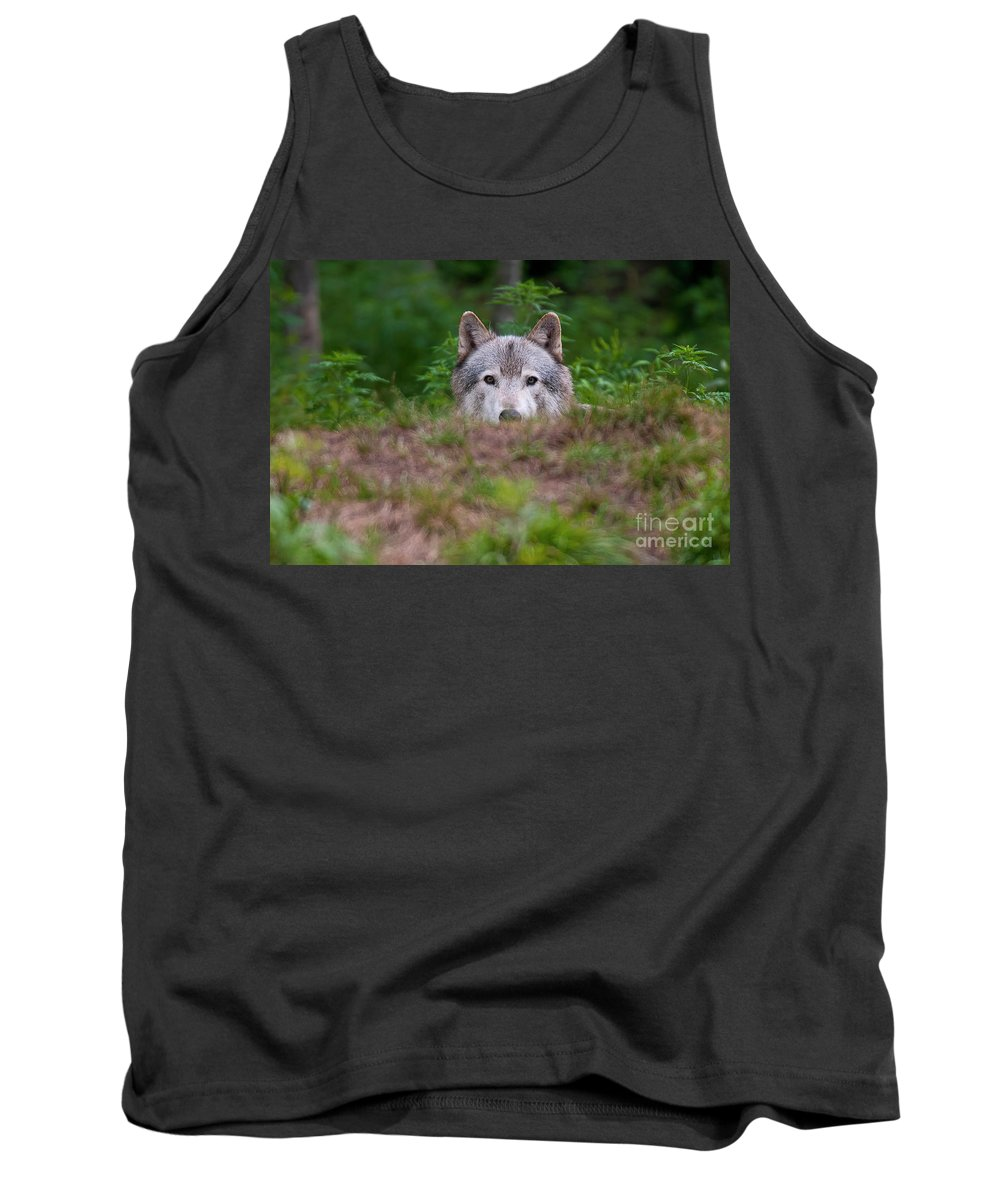 Michael Cummings Tank Top featuring the photograph I See You by Michael Cummings